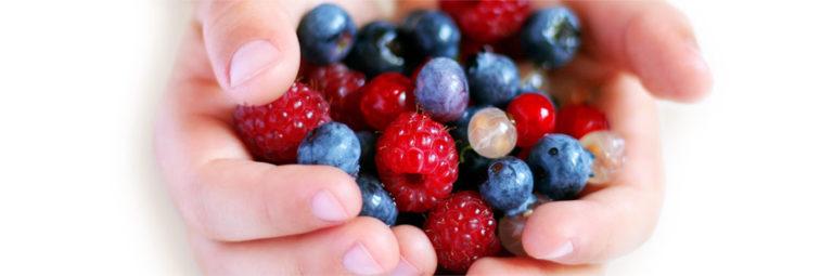28-fruits